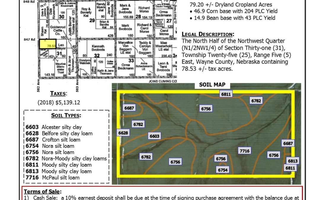 Cropland for sale in Wayne County, NE  78.53 +/- tax acres