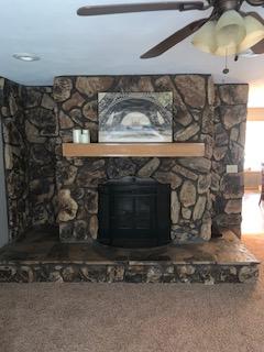 502 E. State St. - fireplace