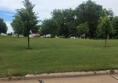 516 W 3rd, Laurel - side yard (summer)