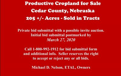 205 +/- Acres of Productive Cropland in Cedar Co, NE – SOLD